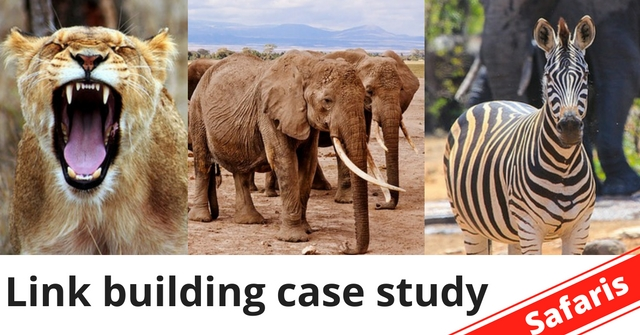How many links does it take for a new website to rank on the first page of Google? (African Safaris case study)